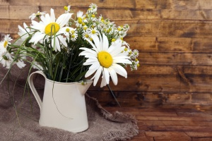 Beautiful bouquet of daisies in decorative vase